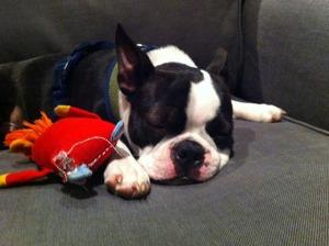kemper sleeping