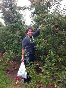 apple picking_02