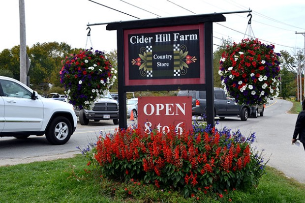 Apple Picking_Cider HIll Farm_02