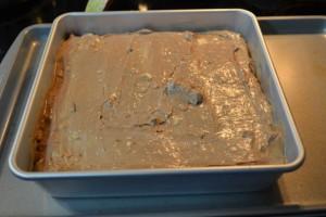 Swirly Cheesecake Bars-8