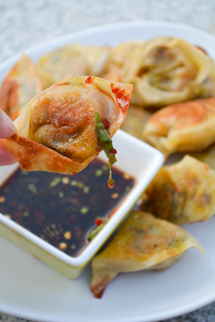 Vegetarian Wontons with Spicy Soy Dipping Sauce- SRC – I ...