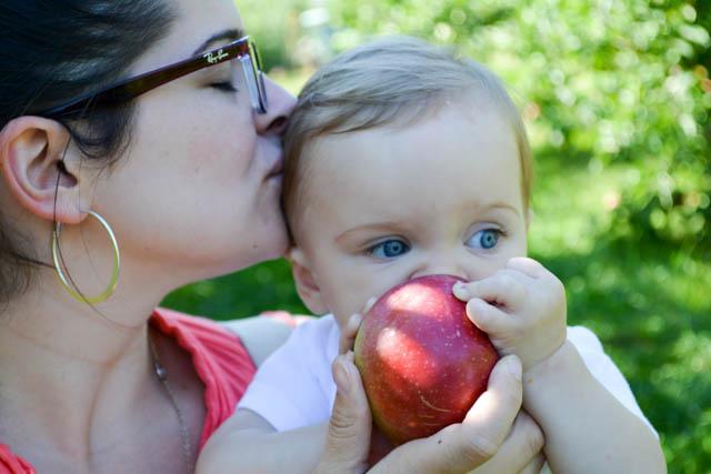 Applecrest Farm Apple Picking-15