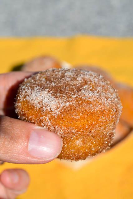 Mini Pumpkin Mini Muffins-5