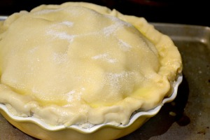 Cranberry Apple Pie_12