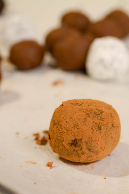 Boston Chocolate Making Class-01