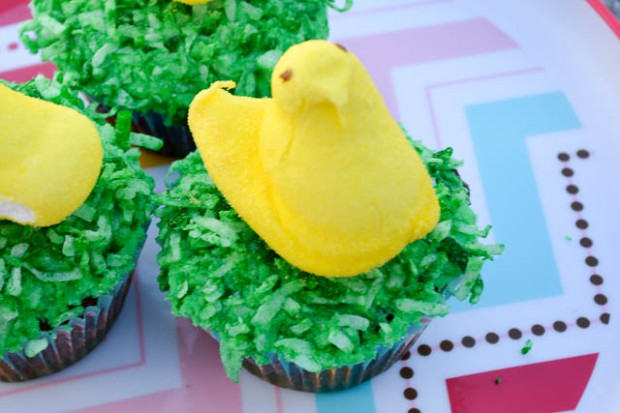 Easter Chicks Cupcakes-1