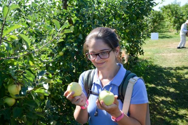 Apple Picking_Tougas Family Farm-10