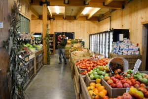 Apple Crest Farm Day-15