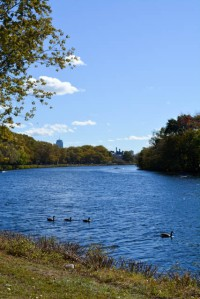 Head of the Charles_2015-09