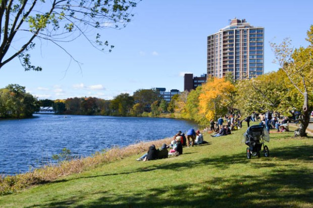 Head of the Charles_2015-10