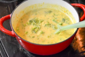 Broccoli Cheddar Soup for Two-8
