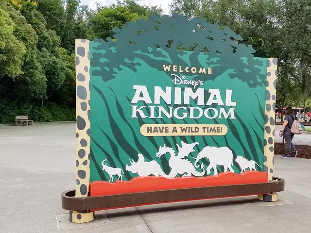 Disney Vacation_Wild Kingdom-07