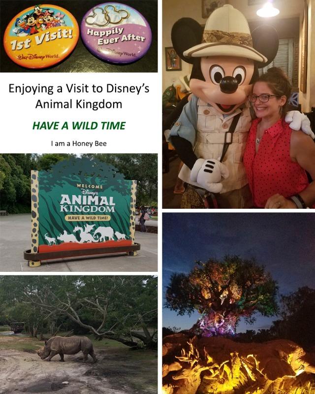 Enjoying a Visit to Disney's Animal Kingdom