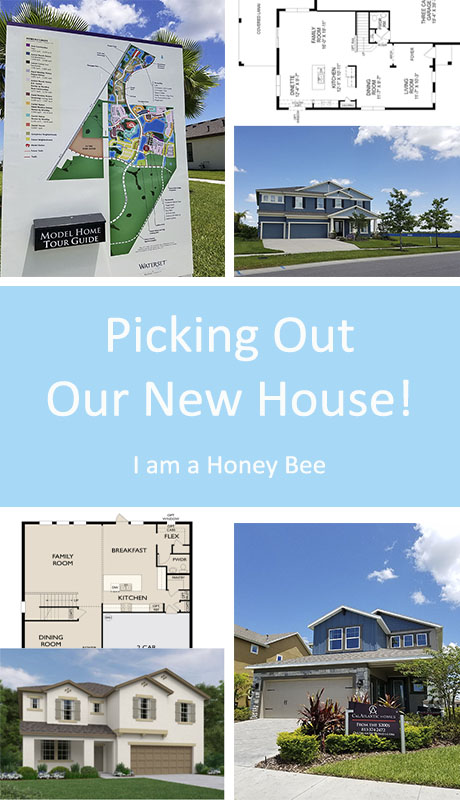 Picking out Our New House