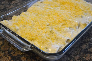 Ranch Chicken Enchiladas_15