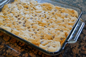 Smores Chocolate Chip Cookie Bars-9